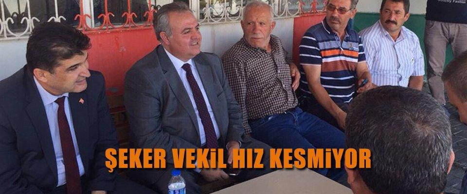 RECEP ŞEKER HIZ KESMİYOR