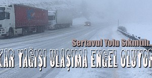 Karaman#039;da Kar Yağışı