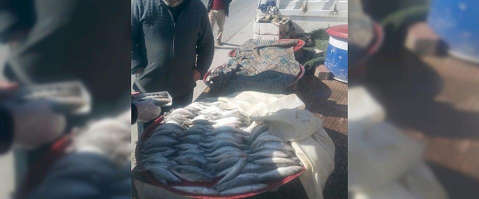 Küçük Balık satışına ceza