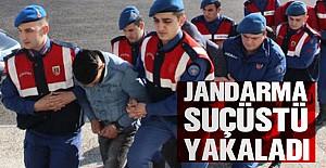 Jandarma Suç Üstü Yaptı